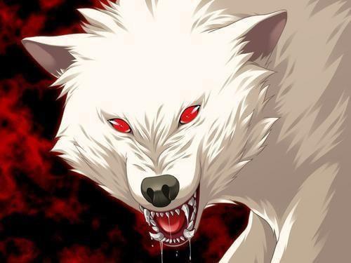 Злой белый волк
